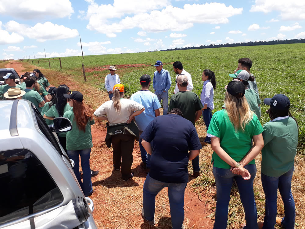 Alunos de Medicina Veterinária da Unifil em Visita à Fazenda Meio Século